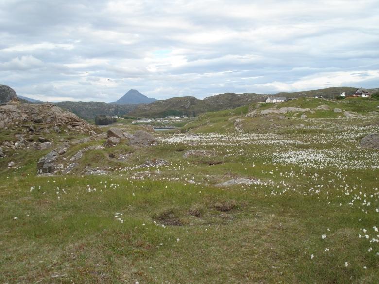 North Scotland - June 07 117